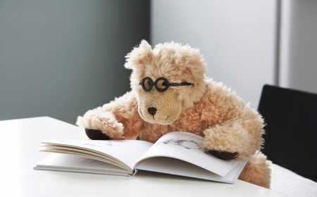 Teddy bear in glasses reads a book with pictures