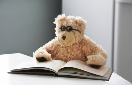 Teddy bear in glasses reads a book