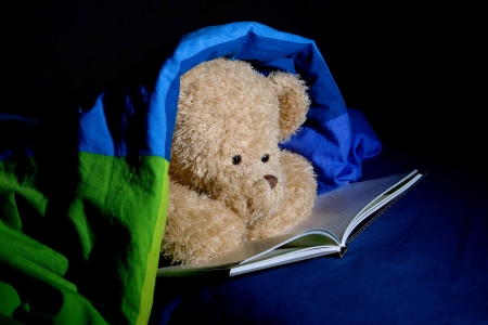 Teddy bear reads a book in bed under cover
