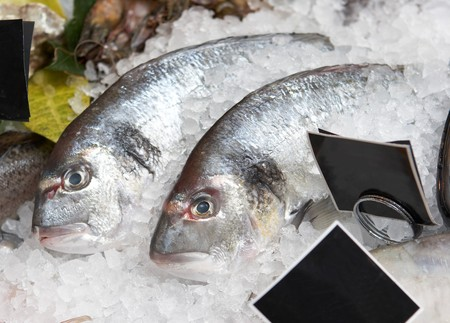 Two salmons on ice in supermarket showcase
