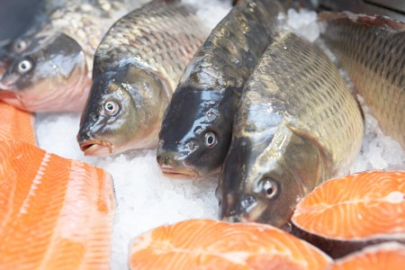 Salmons on ice in supermarket showcase Stock Photo