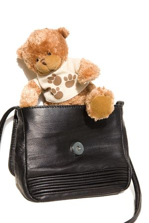 playthings: Teddy bear tries to escape from black leather bag