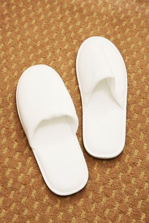 The pair of white double slippers on a carpet