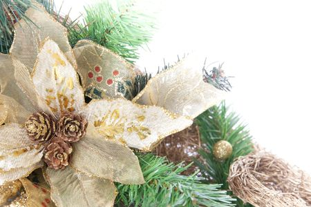 Part of Christmas decoration flower on white background with place for your text photo