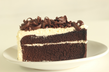 Chocolate layer cake decorated with chocolate line