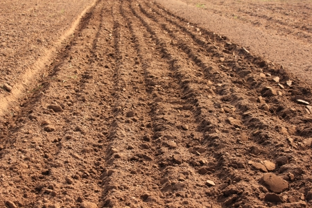 furrow: Tractor plowing a furrow for planting