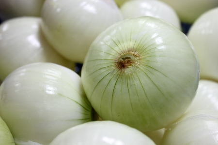 A Fresh onions  peeled and for used