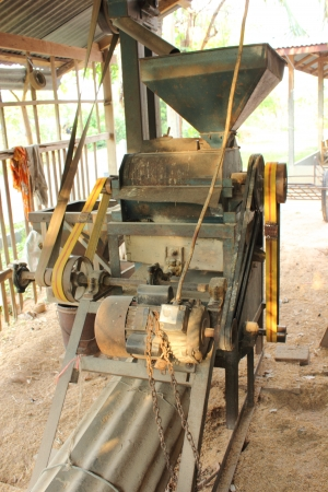 rice mill: Old village rice mill  removing the chaff, bran and germ to produce white rice. removing the chaff, bran and germ to produce white rice.