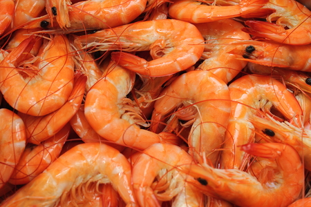 Boiled shrimp on ice for a party.
