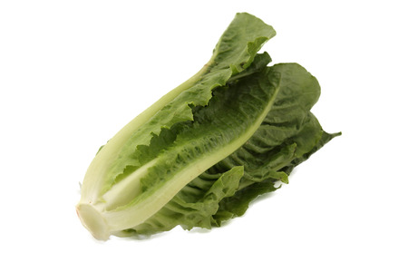 A vegetable isolated on the white background.
