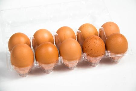 chicken egg: A carton of fresh free range eggs on a white background. Stock Photo