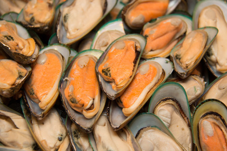 order in: New Zealand green mussel ready for order in  market