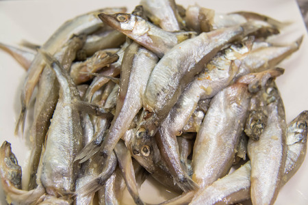 A Small fish Big-scale sand smelt