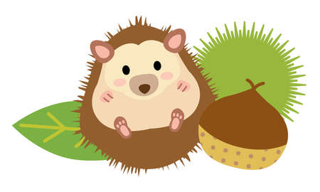 A chestnut and the cute hedgehog in the autumn