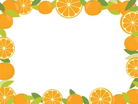 The whole frame of mandarin oranges