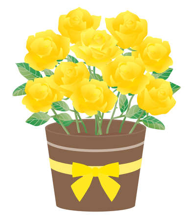 Illustration of the potted yellow rose Çizim