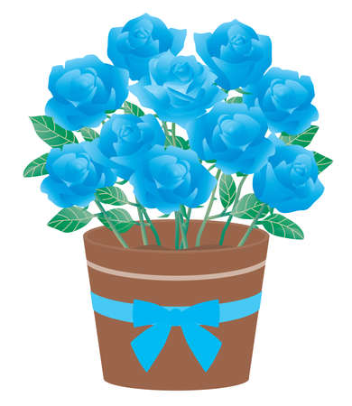 Illustration of the potted blue rose