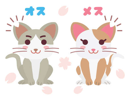 """Illustration of the pair of the local cat which cut an ear and Japanese letter. Translation : """"Male"""" """"Female"""""""