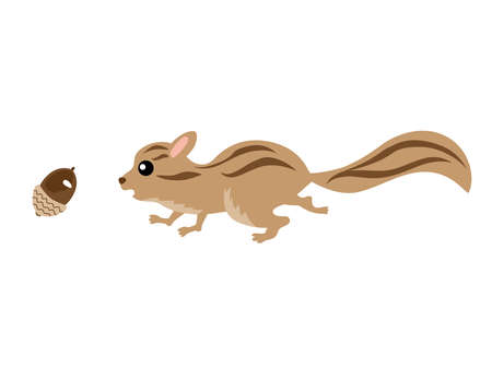 Illustration of a squirrel running after an acorn