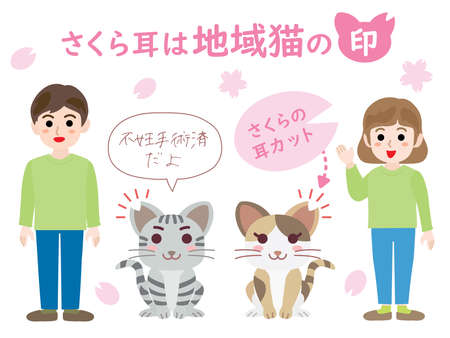 "Regional cat. Translation : ""cherry blossom ear is symbol of the regional cat"" ""Sterilization finished"" ""cherry blossom ear cut"""