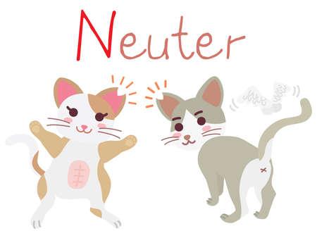 "Illustration of the regional cat plan of ""Neuter"" Vetores"