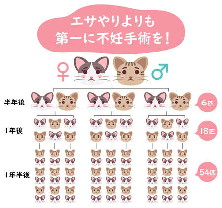 """Illustration of regional cat and Japanese letter. Translation : """"Sterilization more than feeding"""" """"Half a year later"""" """"One year later"""" """"One and a half years later"""" """"6 of them"""" """"18 of them""""""""54 of them"""" Vecteurs"""