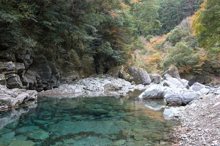 Crystal deep in autumn (Yasui Valley, Kochi Prefecture) Stock fotó