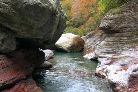 Nakatsu Valley valley beauty (Kochi Prefecture)