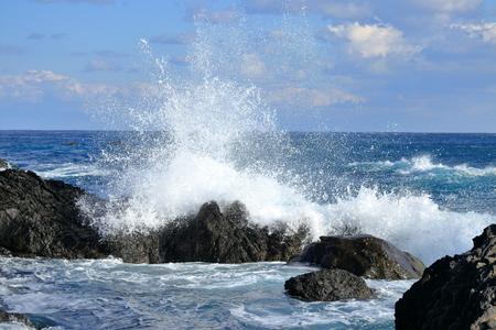 A wave to break down (Muroto City, Kochi Prefecture)