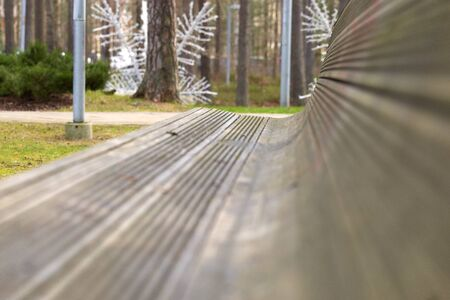 Side view perspective of a bench in a forest park