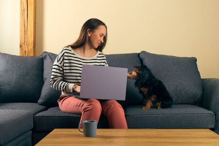 woman at remote work sitting on a sofa typing on a laptop smile and caress her little dog