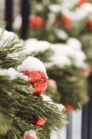 Christmas background red balls on a green tree branchs with snow.