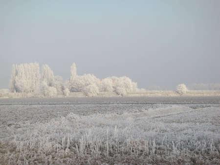 overflakkee: Winter at Goeree-Overflakkee Stock Photo