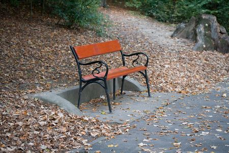 Photo of a lonely bench in the park Stock Photo - 8015102
