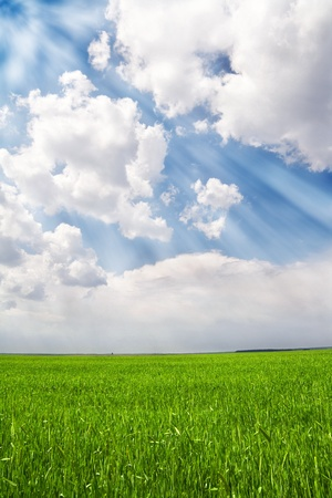 Photo of a green field and blue sky with rays of light