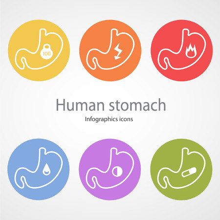 Human stomach.  Vector