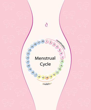 Ciclo mestruale, silhouette femminile.