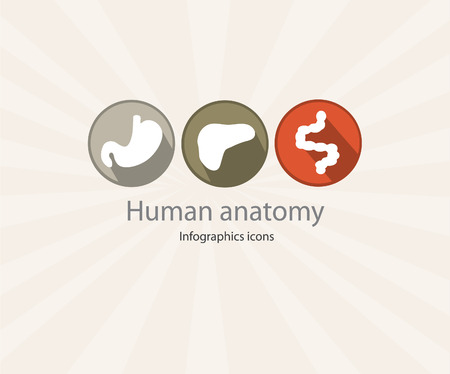 bowel cancer: Human digestive systems icons. EPS 10 file.