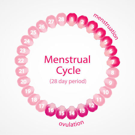 menopause: Menstrual cycle. Pink roses petals.