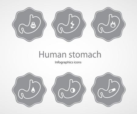 Human stomach. Infographics icons.EPS 10 file.