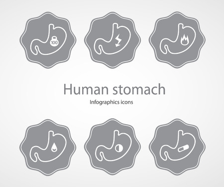 Human stomach. Infographics icons.EPS 10 file.