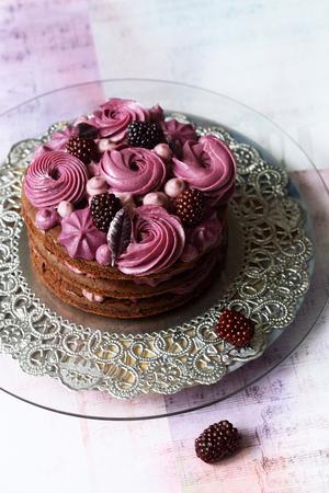 Naked Chocolate-Blueberry Cake, on light background.