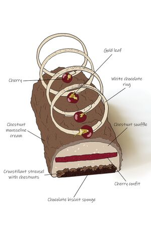 Detailed schematic diagram of cake with description of layers, on white background.