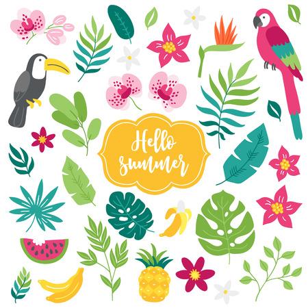 Zestaw elementów tropikalnych. Tukan, ara, bambus, ananas, orchidea, arbuz, banan, liście palmowe. Projekt kreskówki