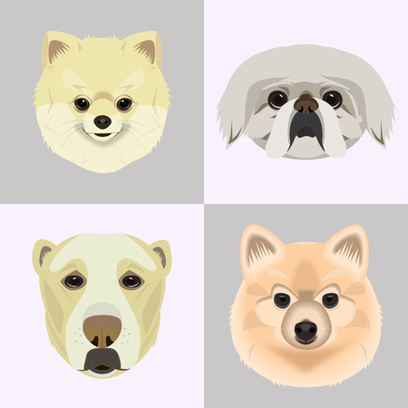Flat style dog head icons. Cartoon dogs faces set.