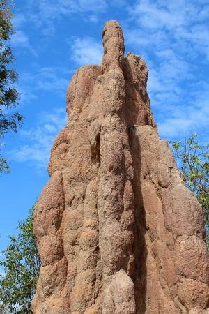 mound: Termite Mound