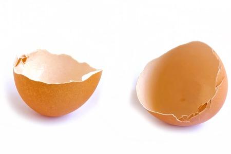 an egg shell: Egg Shell on White Background