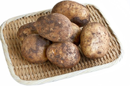 Freshly Harvested Potatoes on White Background