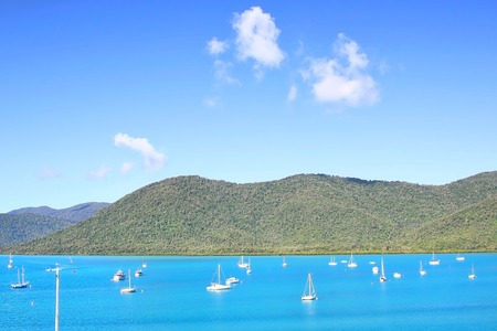 airlie: Shute Harbour, Airlie Beach