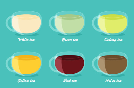 oolong: Tea Types Infographics. Vector tea drinks guide in flat style